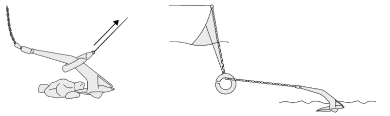 Ultra Marine Ultra Ring