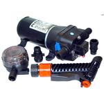 Flojet Heavy Duty Deck Wash Pump 4325 - bluemarinestore.com